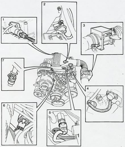 2005 bmw 325xi engine diagram  bmw  auto wiring diagram